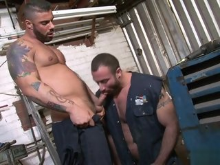 bear Muscle bear anal copulation on every side cumshot muscle